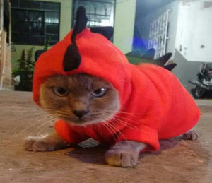 Kitty Dragon Costume