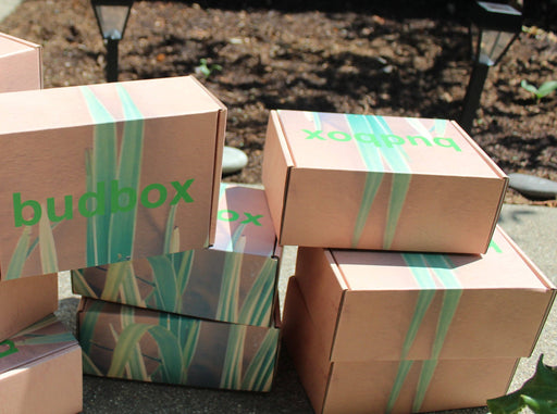 Budbox- Handpicked Varietal (Subscription)