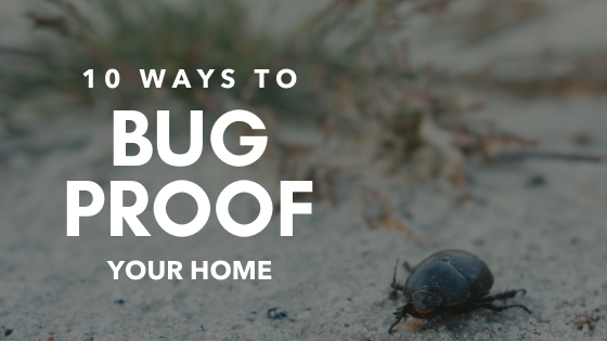 10 Ways To Bug-Proof Your Home