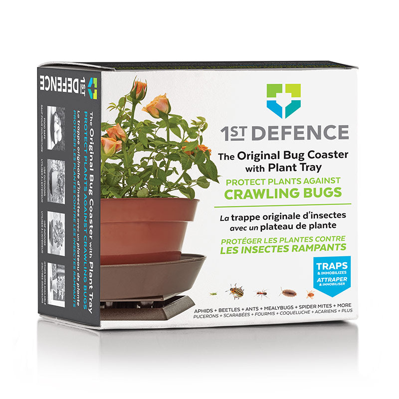 Bug Protection for Potted Plants