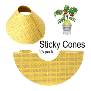 Sticky Cones 25 Pack