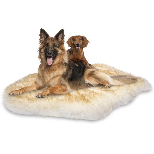 Luxury Large Dog Bed by PresentPet