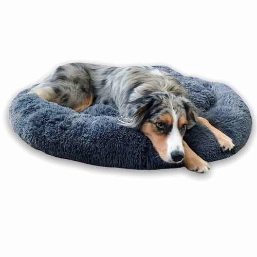 Soothing Dog Bed by PresentPet