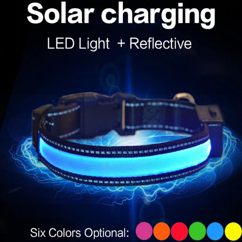 Solar & USB Rechargeable LED Collar by PresentPet