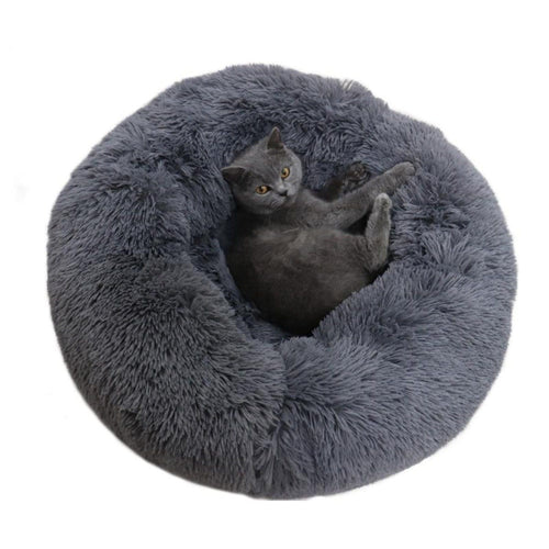 Round & Raised Cat Marshmallow Bed by PresentPet