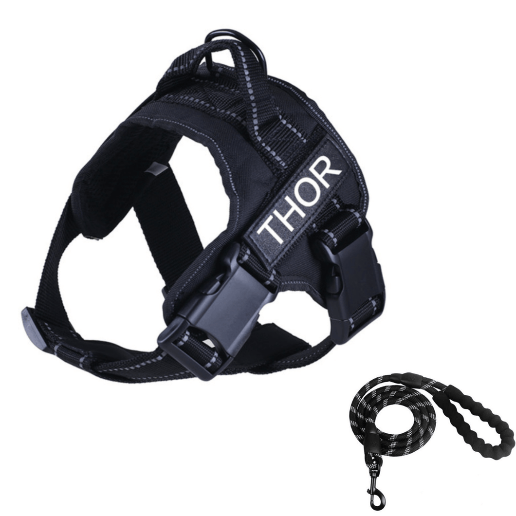 Personalised Reflective No Pull Harness (Free Dog Lead Included) by PresentPet