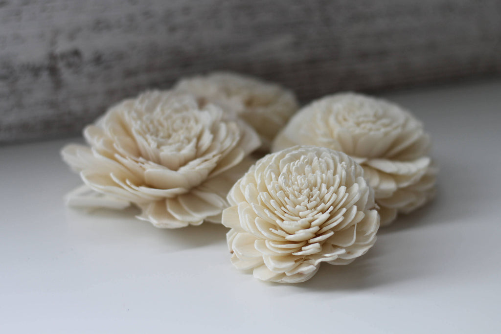"Olivia Blossom Assortment 1-3.5"" Loose Flowers & Samples Pine and Petal Weddings"