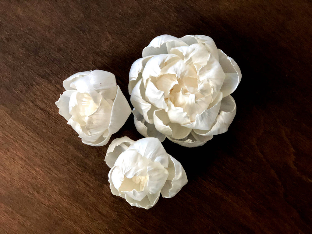 "12 Flower Assortment - Savannah Peonies 1.5-3"" - PineandPetalWeddings"