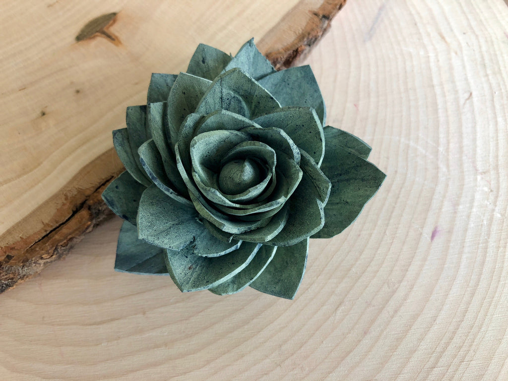 12 Blue and Green Delicate Wood Succulents Loose Flowers & Samples Pine and Petal Weddings
