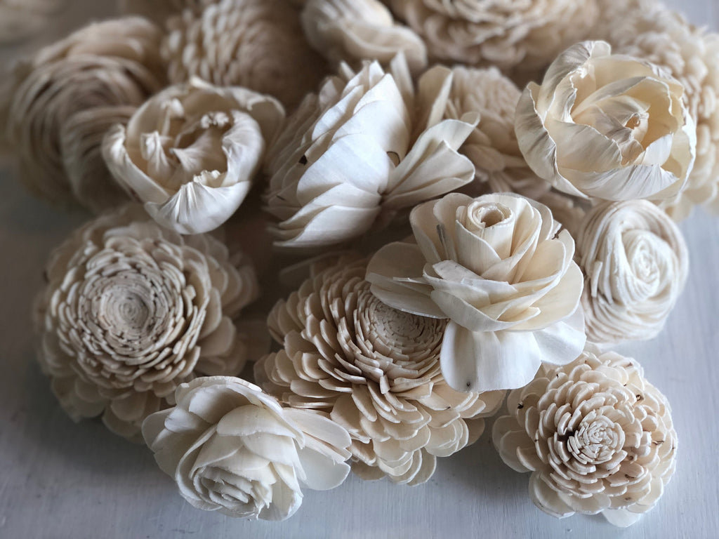 SOLA MIX - Cassidy, Grace, Olivia, Cheyenne Loose Flowers & Samples Pine and Petal Weddings