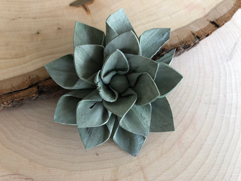 12 Blue And Green Delicate Wood Succulents 2 Pineandpetalweddings