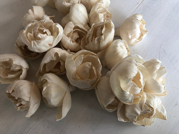 Cassidy Sola Wood Rose - Multiple Sizes - Wood Sola Rose Flower - Loose Flowers - Wooden Flowers - Wedding Bouquet Flowers - DIY Bride