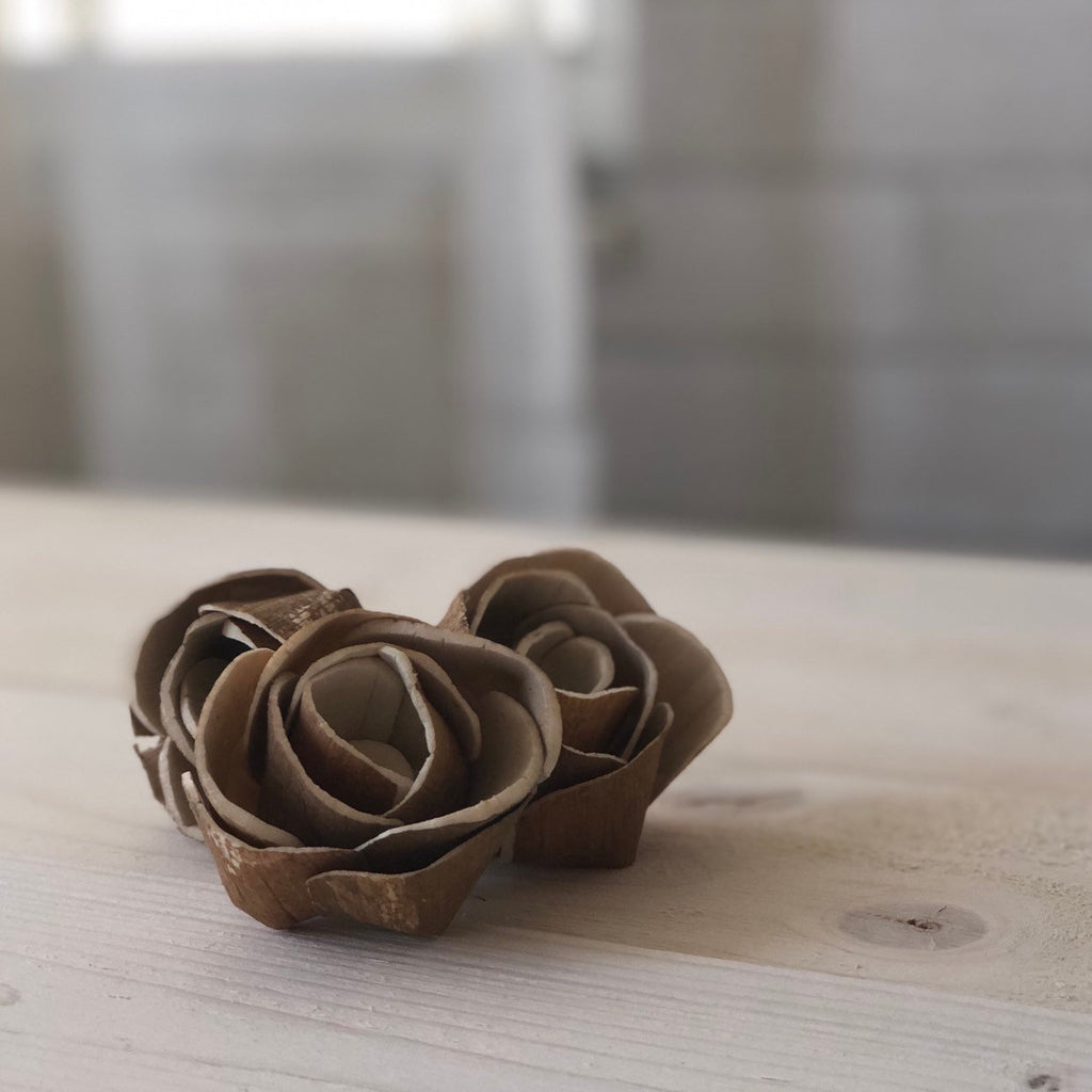 12 Flowers - Mara Pine Rose Bud Assortment - PineandPetalWeddings
