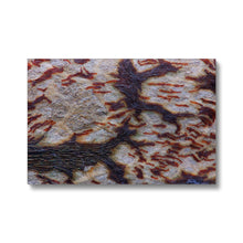 Seed Macro Canvas Print - Genetics by Compound Genetics