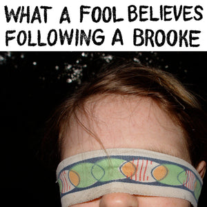 Ashley Eriksson – What A Fool Believes / Following A Brooke FTR 036