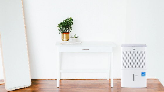 Preparing Your Dehumidifier for Winter Storage