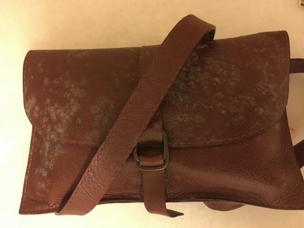 Mildew in leather due to high humidity