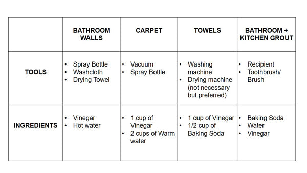 Table 1 Ingredients needed for cleaning mold in bathroom, carpet, towels
