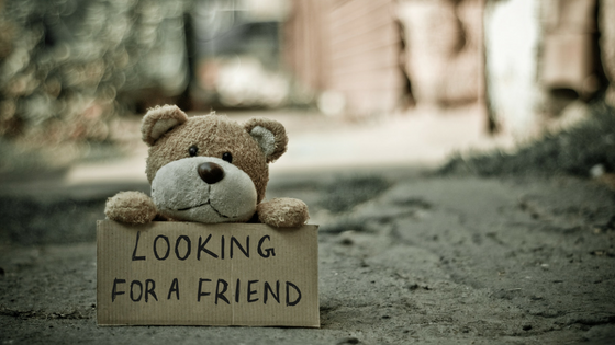 Teddy bear looking for friends