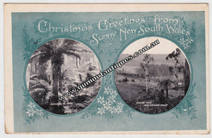 Postcard Christmas GreetingsFrom Sunny New South Wales Australia c1912