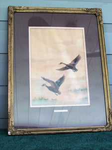 N Caley (Neville Cayley) Watercolour of Blue Teals in Flight