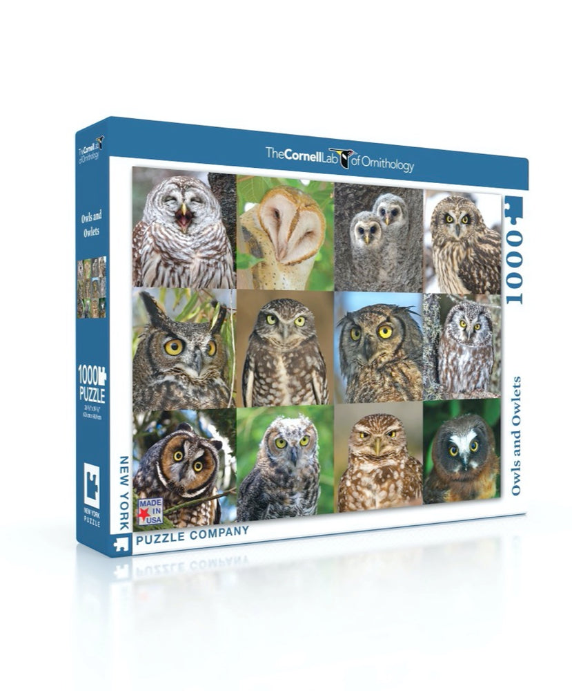 Owl and Owlets 1000 Piece Jigsaw Puzzle
