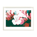 Alstroemeria Red White & Blue (Framed)