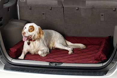 Covercraft Cargo Area Pet Pad - Free Shipping on Covercraft Trunk Pet Mat for Dogs