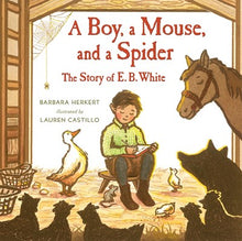 A Boy a Mouse and a Spider by Herkert