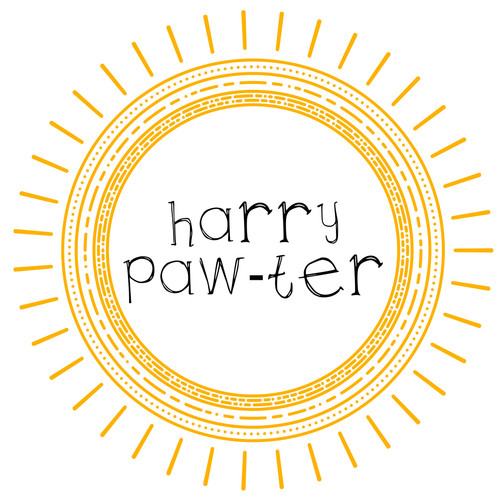 Maggie Mae's Monthly: Harry Paw-ter 6 Month Subscription