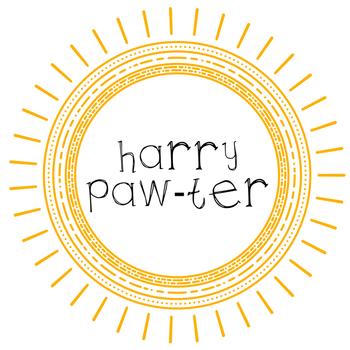 Maggie Mae's Monthly: Harry Paw-ter 12 Month Subscription