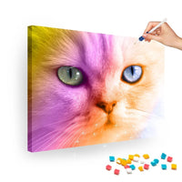 Broderie Diamants Chat multicolore
