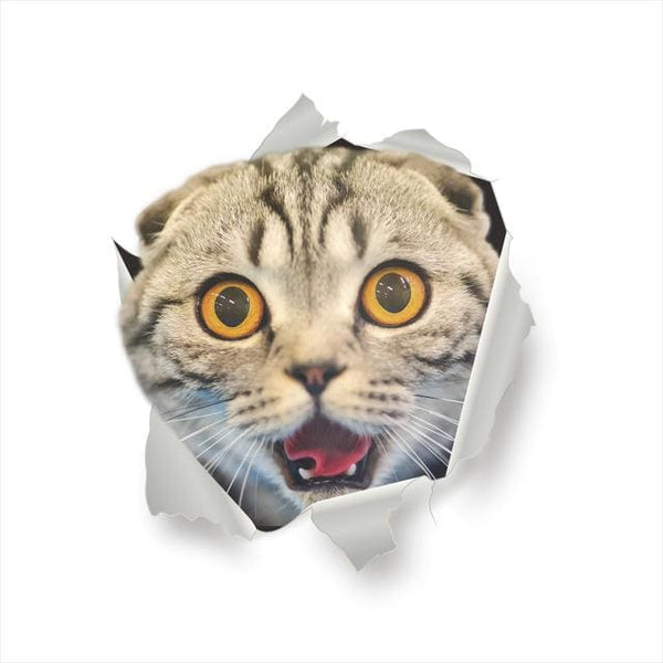 Stickers Chat effet 3D - Stickers muraux