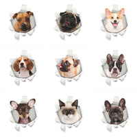 Stickers Chiens et chat - Stickers muraux