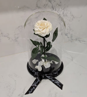 The Foreverlasting Rose (White) - red roses, roses that last 1 yr, roses that last a yr, roses that last one yr, roses that last a year, roses that last 1 year, roses that last one year, red roses, pink roses, white roses, luxury roses, luxury gift, luxury rose box, eternity roses, forever lasting roses