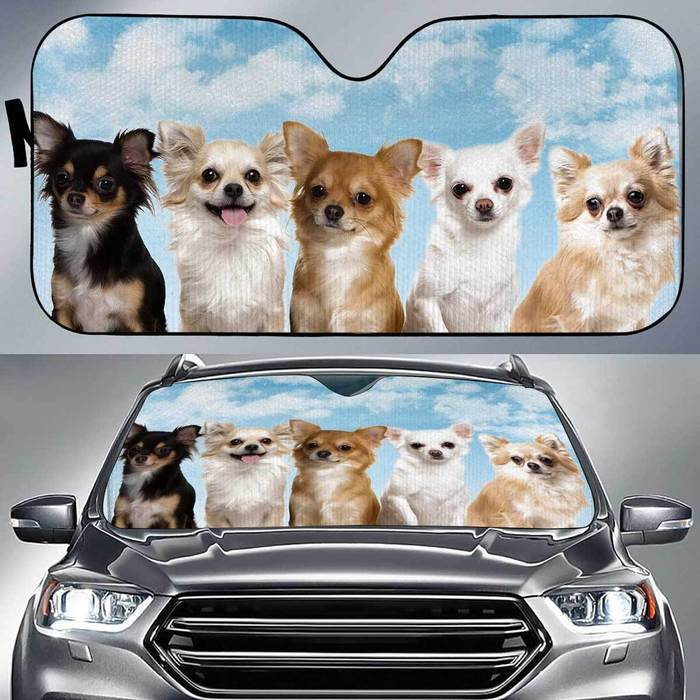 Chihuahua Funny Team , Multi Sizes Auto Sun Shade For Pet Lovers amazing best gift ideas 2020