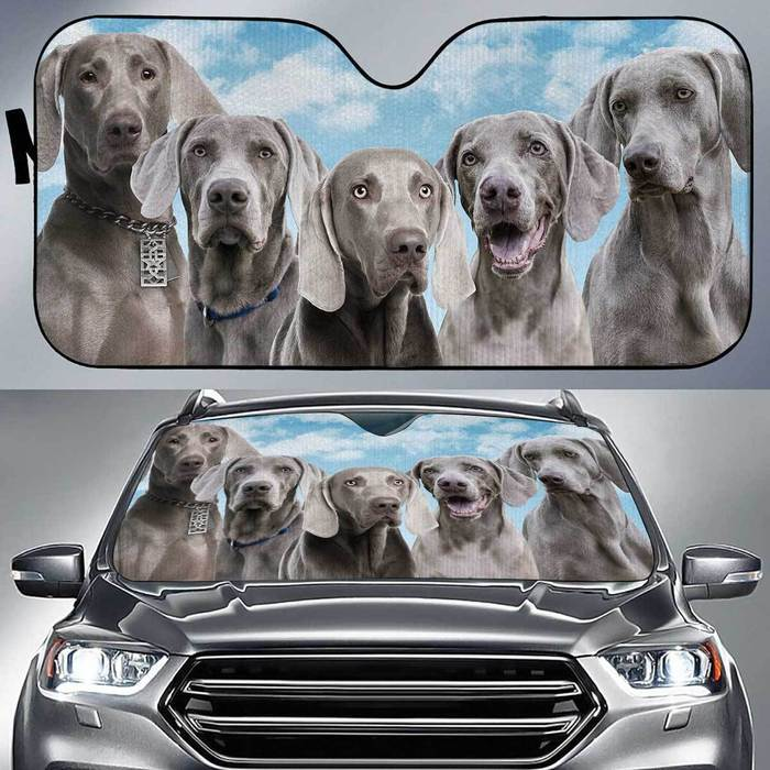 Weimaraner Funny Team , Multi Sizes Auto Sun Shade For Pet Lovers amazing best gift ideas 2020