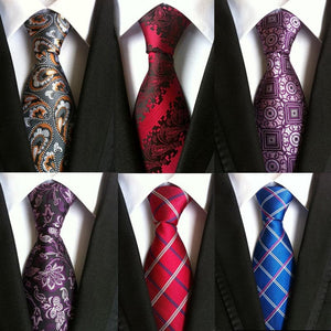 SHENNAIWEI 100% Premium Quality Jacquard Woven Silk Men's Classic Paisley Ties for Formal Business Suits