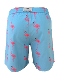 Boys Flamingo Trunks