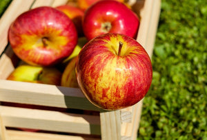 BULK Organic Juicing Apples 18kg
