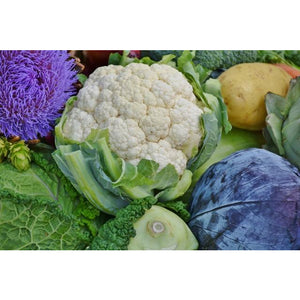 Certified Organic Cauliflower (small-medium)