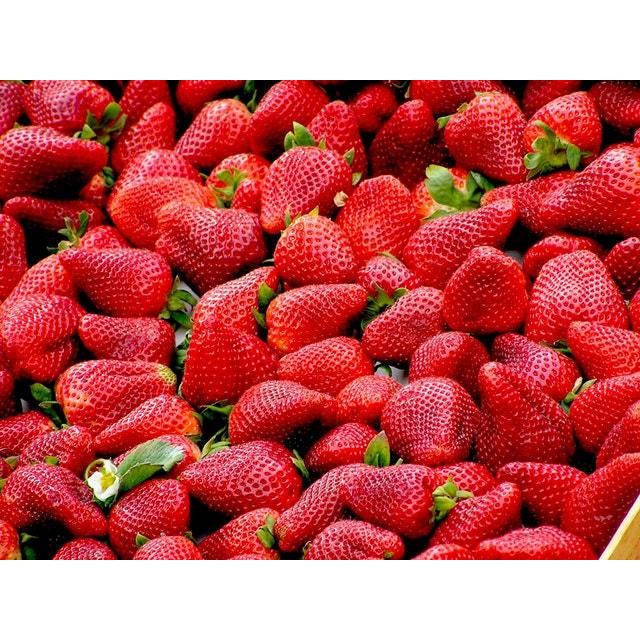 Organic Punnet of Strawberries