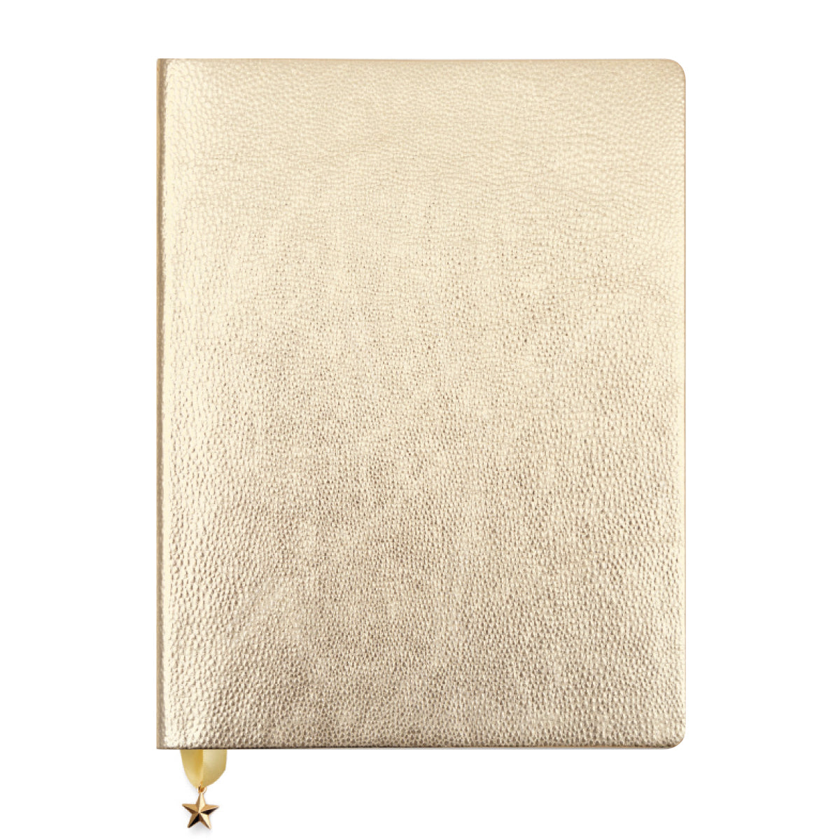 ALL THAT GLITTERS JOURNAL - LIGHT GOLD METALLIC