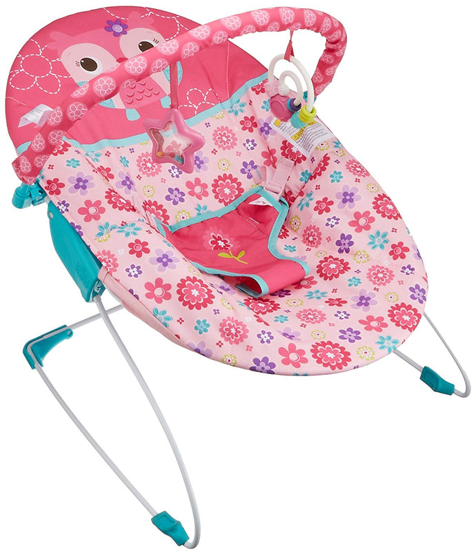 Bright Starts Happy Flowers Vibrating Bouncer