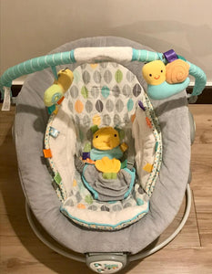 [Pre-Loved] Taggies Soothe me Gently Bouncer with Music & Vibration