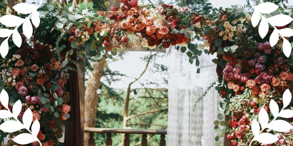 Curly climbing roses