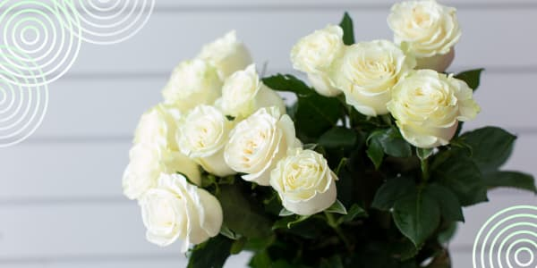 When are white roses presented