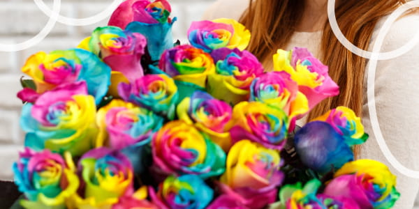 how to create multicolor roses at home