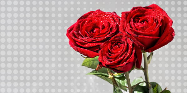 What flowers combined with burgundy roses?