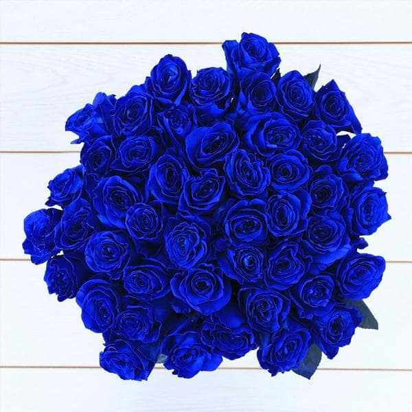 blue rose delivery